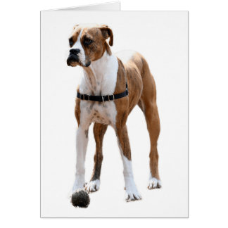 Boxer Standing Tall Card