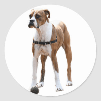Boxer Standing Tall Classic Round Sticker