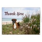 Boxer Thank You Card Hiding In The Beachgrass
