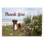 Boxer Thank You Card Hiding In The Beachgrass