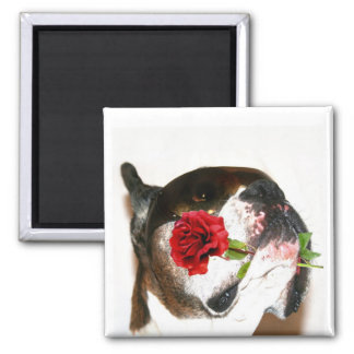 Boxer with Red Rose Magnet