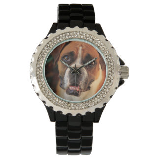 boxer's face weeping of friendly behavior wristwatch