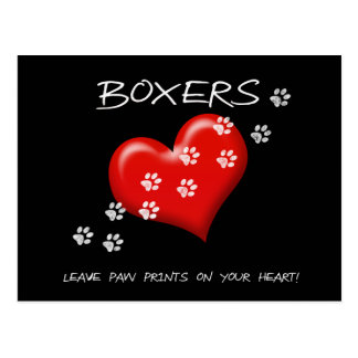 Boxers leave paw prints on ur heart Post card
