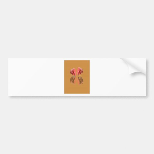 Boxing Glove With Background wood Bumper Sticker