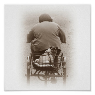Boy And Pug Dog Going For A Ride Print