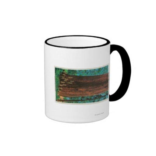 Boy Scout Tree on Redwood HighwayRedwoods, CA Coffee Mugs