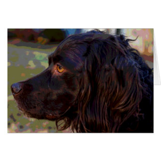 Boykin Spaniel Photo Greeting Card