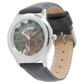 Boys Dinosaur Photo Watch Christmas Gift