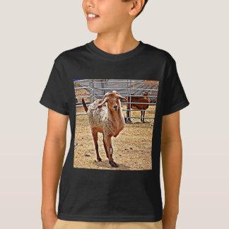 Boy's Tripod Goat Tee Shirt