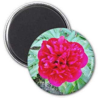 Bozur 6 Cm Round Magnet