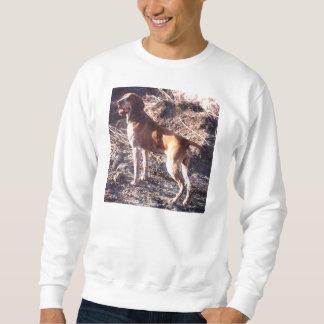 bracco italiano full 2 sweatshirt