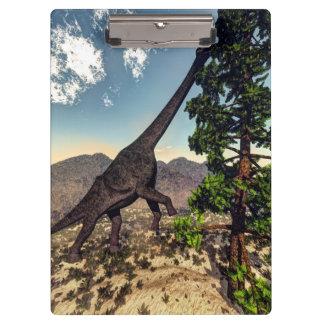 Brachiosaurus dinosaur eating wollomia pine clipboard