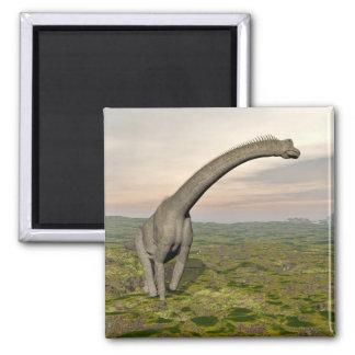 Brachiosaurus dinosaur walking - 3D render Magnet