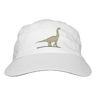 Brachiosaurus Hat