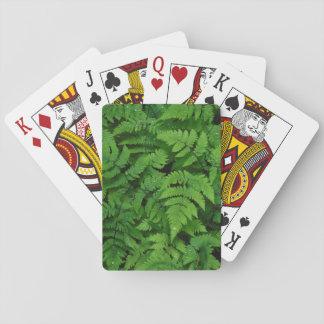 Bracken fern with rain drops, Washington State Poker Deck