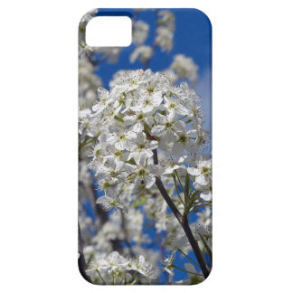 Bradford Pear Blooms Barely There iPhone 5 Case