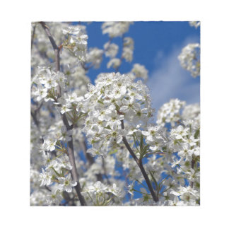 Bradford Pear Blooms Notepad