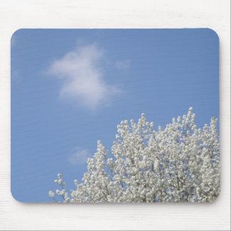 Bradford Pear Tree and Blue Skies Mousepad