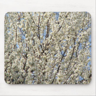 Bradford Pear Tree Bloom Mouse Mat