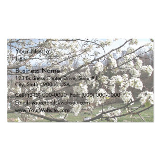Bradford Pear Tree Blossoms Business Card Templates
