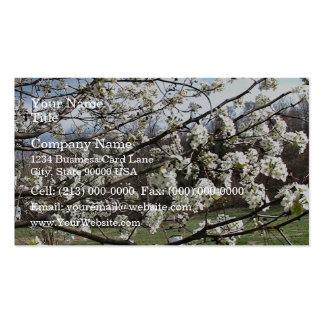 Bradford Pear Tree Blossoms Business Card