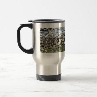 Bradford Pear Tree Blossoms Mug