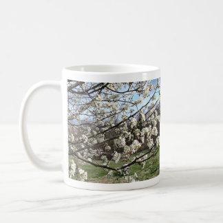 Bradford Pear Tree Blossoms Mugs