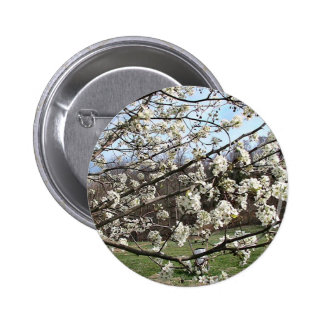 Bradford Pear Tree Blossoms Pin