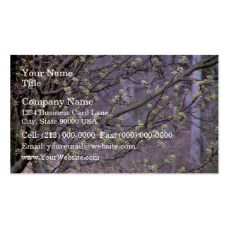 Bradford Pear Tree Buds Business Card