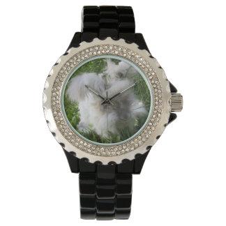 """Bradley"" English Angora Rabbit Watch"