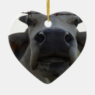 BRAHMAN COW STEER RURAL QUEENSLAND AUSTRALIA CERAMIC HEART DECORATION