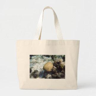 Brain Coral Bag