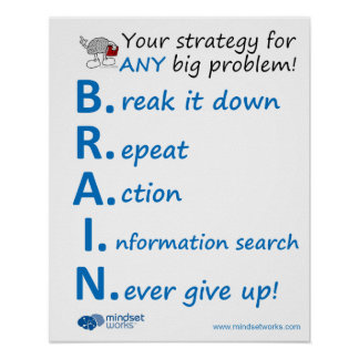 BRAIN Strategy Poster, by Mindset Works Poster