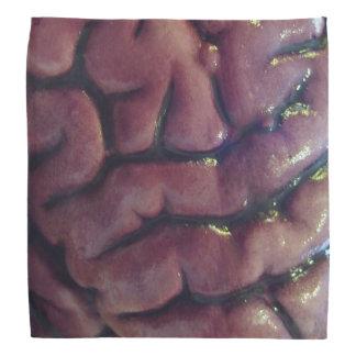Braindanna Head Kerchief
