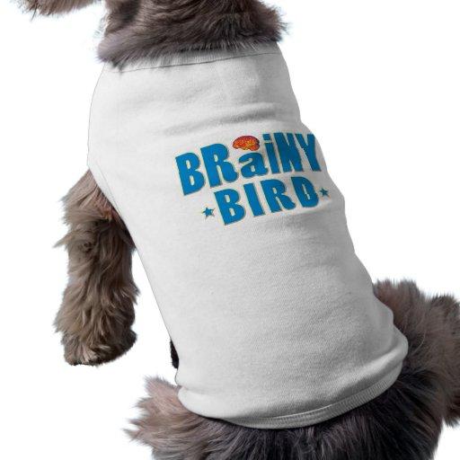 Brainy Bird Pet Clothing