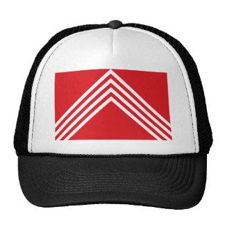 Brakel, Belgium, Belgium flag Mesh Hats