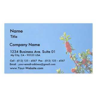 Branch Of Holly Against The Blue Sky Business Card Templates