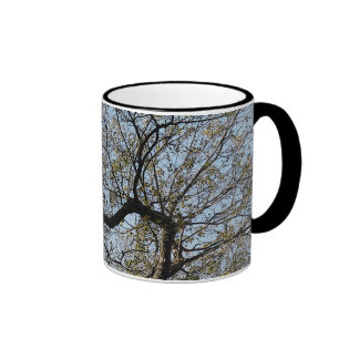 branched out - cup/coffee cup ringer mug