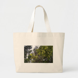 Branches and leaves of a lush green tree bags