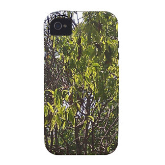 Branches and leaves of a lush green tree iPhone 4/4S cover