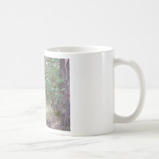 Branches in the Forest Basic White Mug