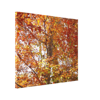 Branches of Orange Leaves Autumn Nature Canvas Print