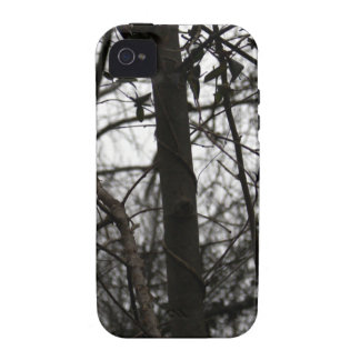 Branches TPD iPhone 4/4S Cases