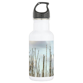 Branches Water Bottle