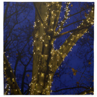Branches with Christmas lights and a dark blue sky Napkin