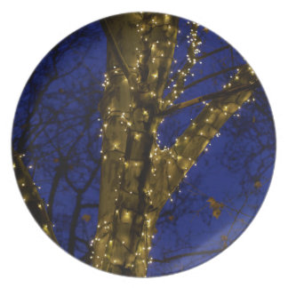 Branches with Christmas lights and a dark blue sky Plate