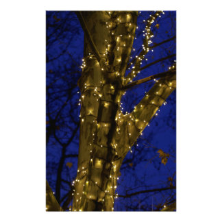 Branches with Christmas lights and a dark blue sky Stationery