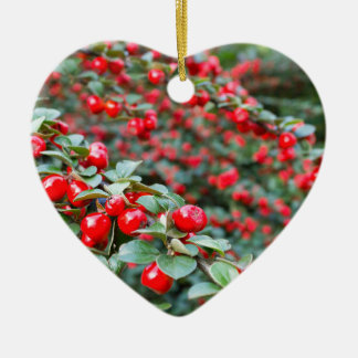 Branches with ripe red cotoneaster berries ceramic heart decoration