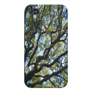 Branching Out iPhone 4 Case