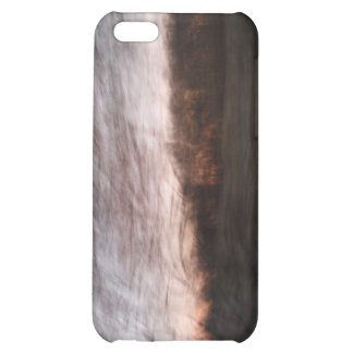 Branching Out Case For iPhone 5C
